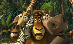 In the Internet appeared the trailer of the film `Madagascar 3`